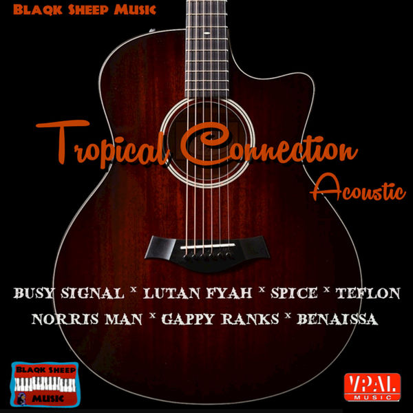 tropicalconnection_acoustic_blaqksheep