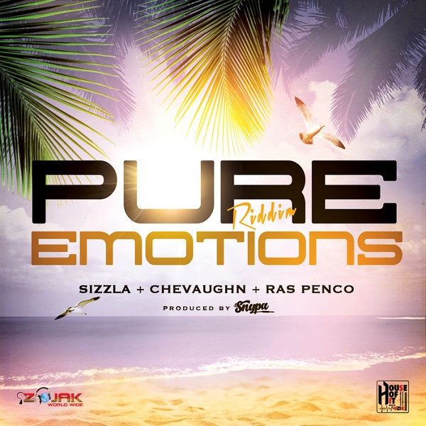 Pure Emotions Riddim [House Of Hit Muzik] (2017)