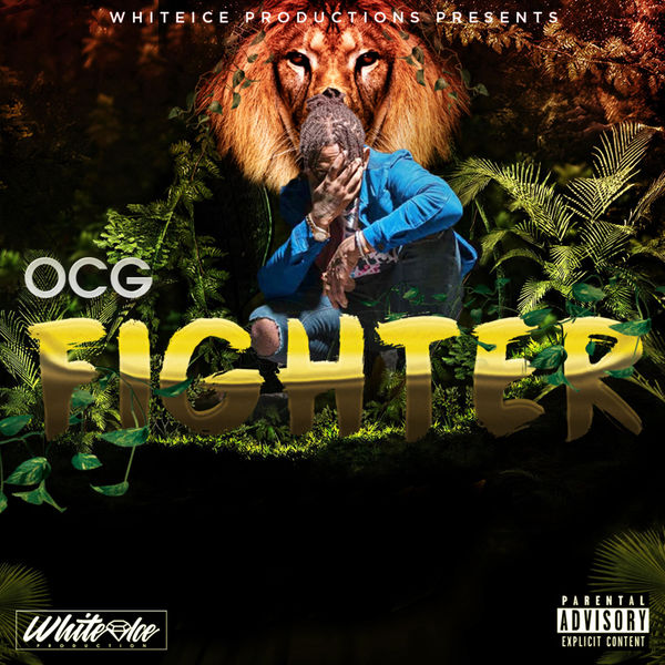 OCG – Fighter (2018) Single