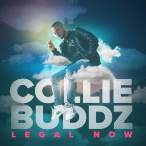 Collie Buddz - Legal Now (2018) Single