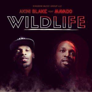 Akini Blake feat. Mavado - Wild Life (2018) Single