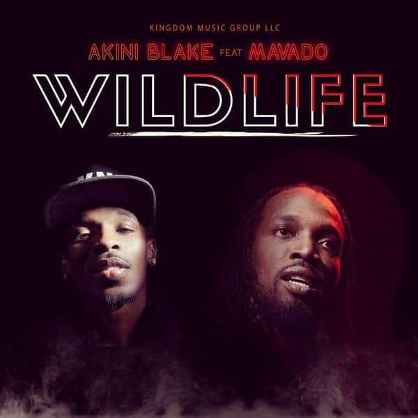 Akini Blake feat. Mavado – Wild Life (2018) Single