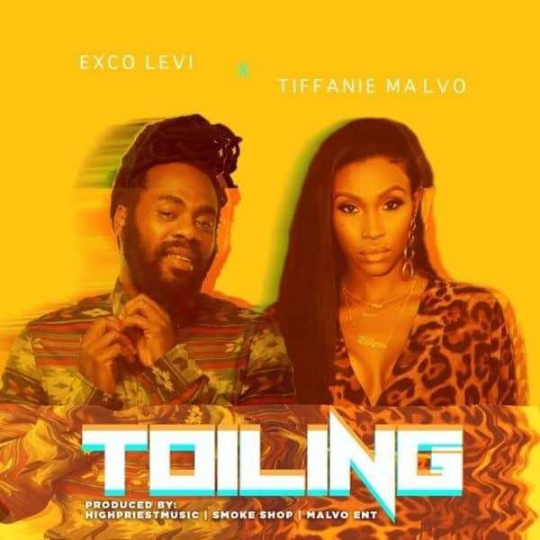 Exco Levi & Tiffanie Malvo – Toiling (2018) Single
