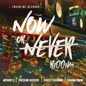 Now or Never Riddim [Trainline Records] (2018)