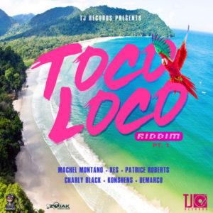 Toco Loco Riddim [TJ Records] (2018)