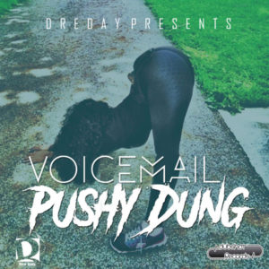 Voicemail - Pushy Dung (2018) Single