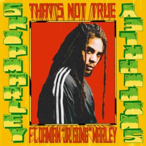 Skip Marley feat. Damian «Jr. Gong» Marley – That's Not True (2019) Single
