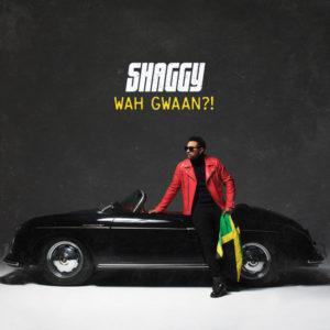 Shaggy - Wah Gwaan?! (2019) Album