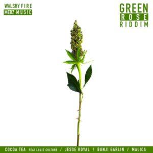 Green Rose Riddim [Walshy Fire / Medz Music] (2019)