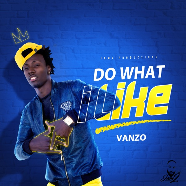 Jam2 Productions x Vanzo - Do What I Like (2019) Album