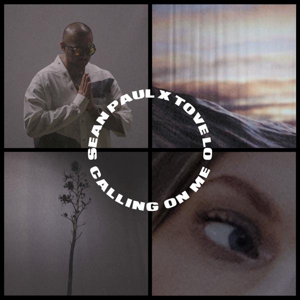 Sean Paul x Tove Lo - Calling On Me (2020) Single