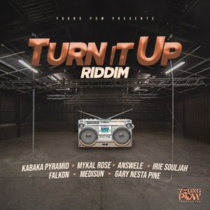 Turn It Up Riddim [Young Pow] (2020)