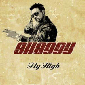 Shaggy - Fly High (2021) Single